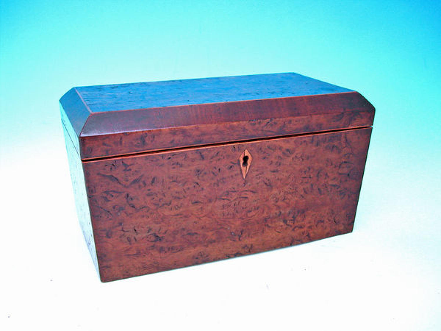 19thc Burr Elm Crossbanded in Fruitwood Tea Caddy  . English.  C1840-6
